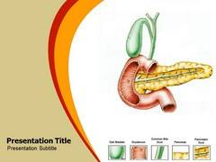 Pancreatitis PowerPoint Slides