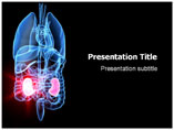 Nephrology Template PowerPoint