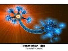Neuron Anatomy Template PowerPoint