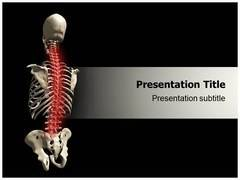 Spinal Cord PowerPoint Design