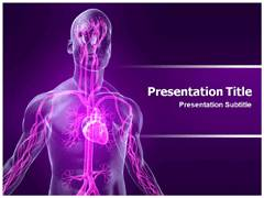 Vascular System Diagram PowerPoint Slides, Vascular System Diagram PowerPoint Design Templates