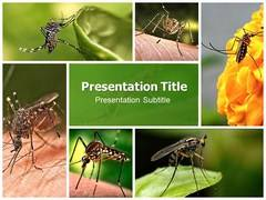 Mosquito Prevention PowerPoint Background