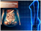 Excretory System PowerPoint Slides