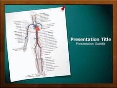 Circulatory System PowerPoint Background