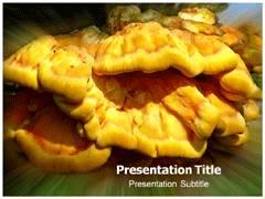 Fungus Parasite PowerPoint Slide