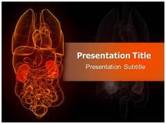 Nephrology Diseases Template PowerPoint