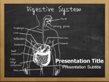 Digestive Disease Template PowerPoint