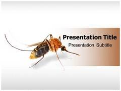 Mosquito Template PowerPoint