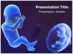 Fetal PowerPoint Backgrounds
