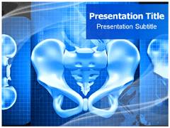 Pelvis PowerPoint Templates