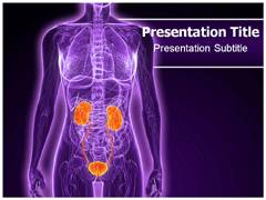 Urology Diseases PowerPoint Slides