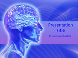 Neuroanatomy PowerPoint Slide