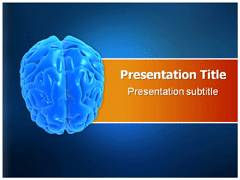Human Brain Anatomy PowerPoint Slide