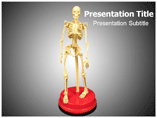 Human Skeleton PPT Background