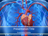 Cardiovascular system PowerPoint Template, Cardiovascular system PowerPoint Backgrounds