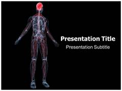 Nervous System Functions PPT Slides