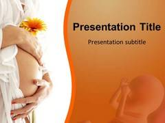 Pregnancy Stages Theme