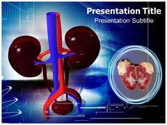 Renal Tumors PowerPoint Background