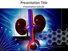 Kidney Structure PowerPoint Background