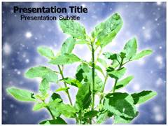 Medicinal Plant Template PowerPoint