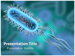 Bacterial Infection PowerPoint Slides