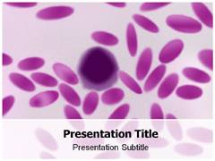 Elliptocytosis PowerPoint Slides