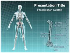 Epiphyseal PowerPoint Slides