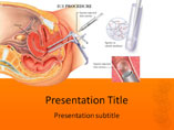 IUI PowerPoint Slides
