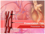 Cardiac Muscle Tissue PowerPoint Template, Cardiac Muscle Tissue  PowerPoint Backgrounds