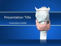Thyroid PowerPoint Slides