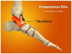 Talus PowerPoint Slides