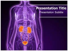 Urology Tests PowerPoint Background