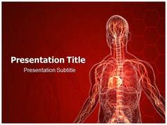 Lymphatic System PowerPoint Slides