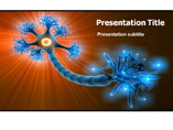Neuron Function PowerPoint Slide
