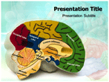 Brain Tumor PowerPoint Slide