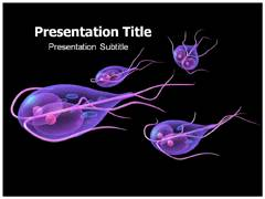 Giardia Symptoms Template PowerPoint