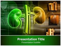 Kidney powerpoint template