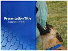 Dog Bite PowerPoint Slides, Dog Bite PowerPoint Slide Templates