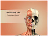 Face Anatomy PowerPoint Backgrounds