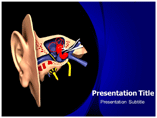 Ear Anatomy Model PowerPoint Templates