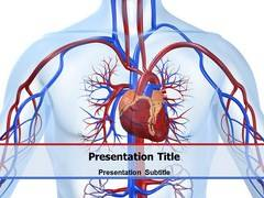 Cardiovascular PowerPoint Template, Cardiovascular PowerPoint Backgrounds