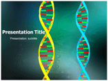 DNA Function PowerPoint Slides