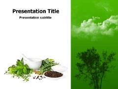 Naturopathy Template